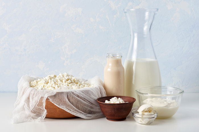 Set of dairy products on light blue background. Cottage cheese, sour cream, mascarpone and fermented baked milk